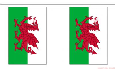 WALES BUNTING - 3 METRES 10 FLAGS